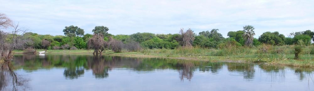 Maun Okavango autotour
