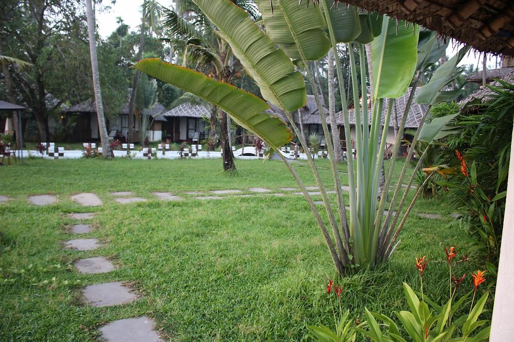hôtel cherai beach kerala