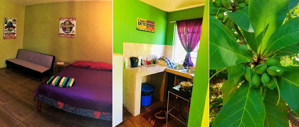 Coryse Ocho Rios Homey Jamaican Studio