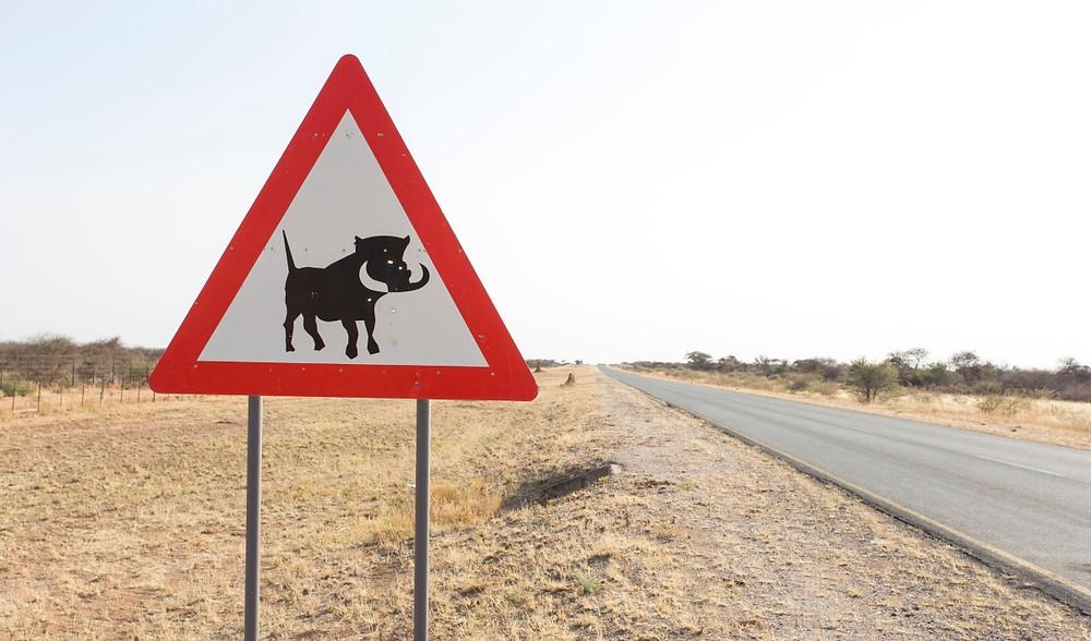route botswana Ghanzi