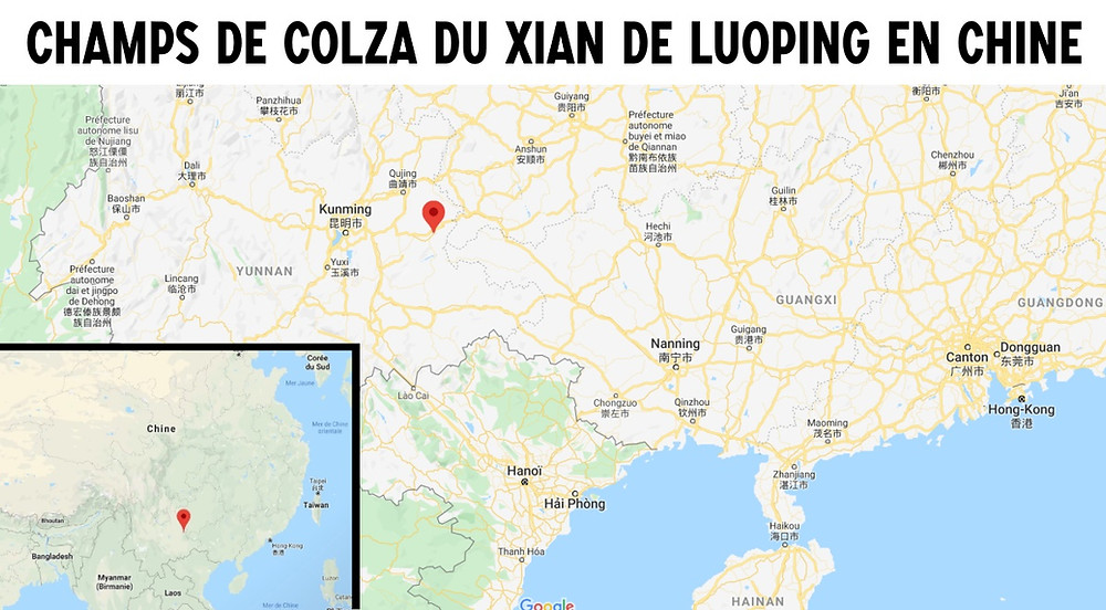 Carte champs de colza Luoping chine