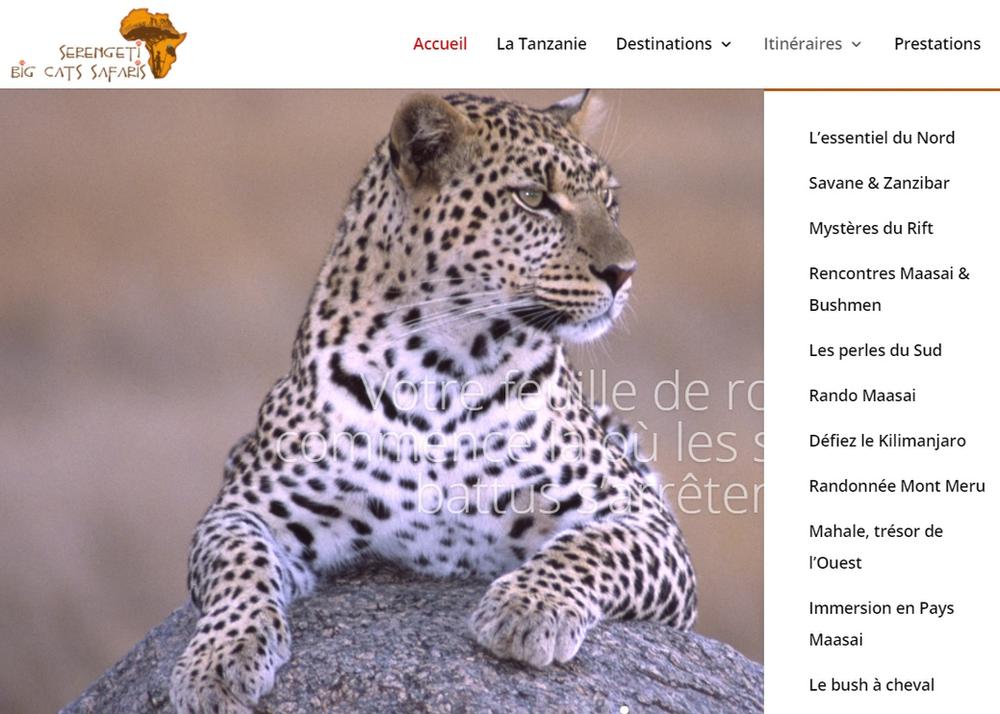 safari en Tanzanie avec l'agence Serengeti Big Cats