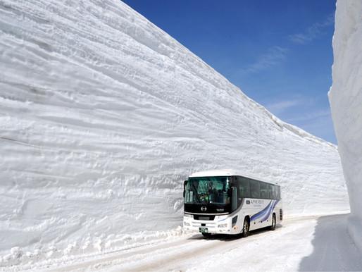 Yuki-no-ōtani, le mur de neige au Japon