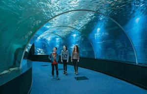 Centre national de la mer  Lieu culturel france