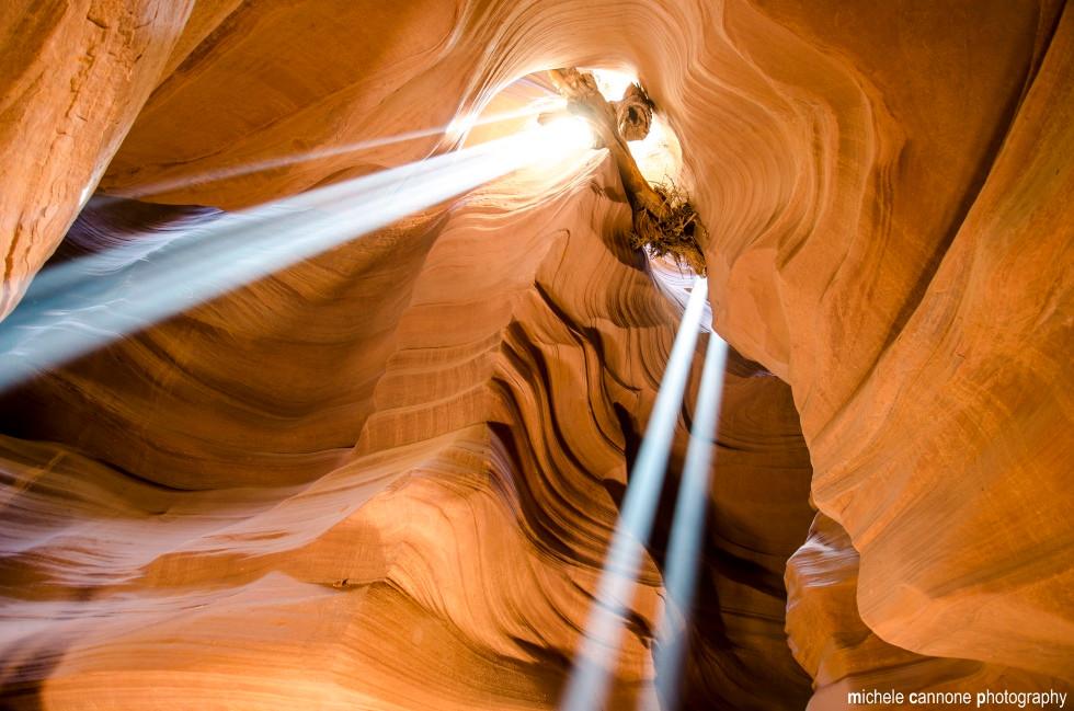 canyon de l'Antilope