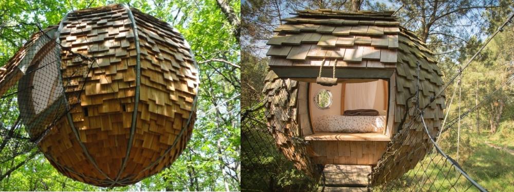 Voyage insolite box dans un nid suspendu