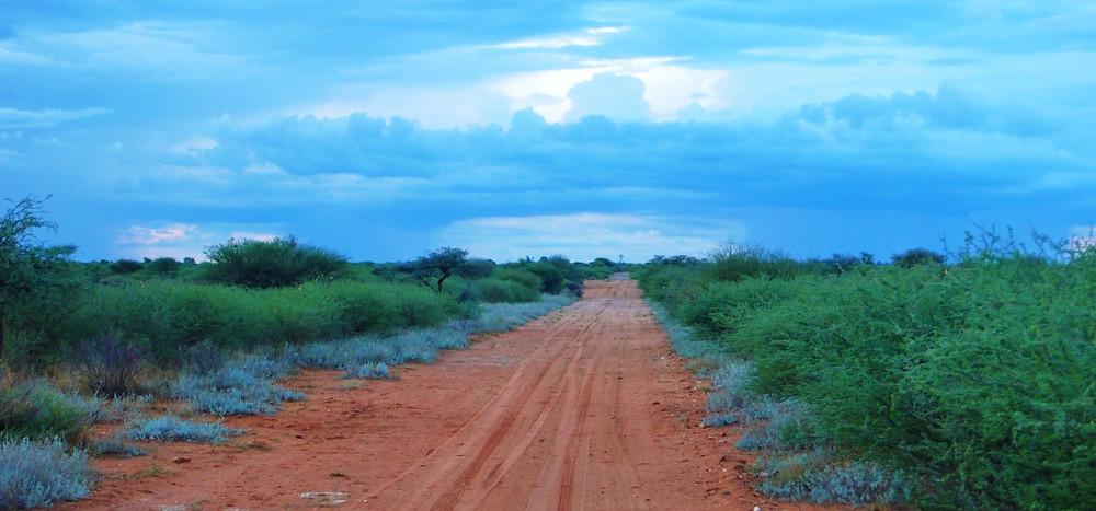 Motswani road trip botswana