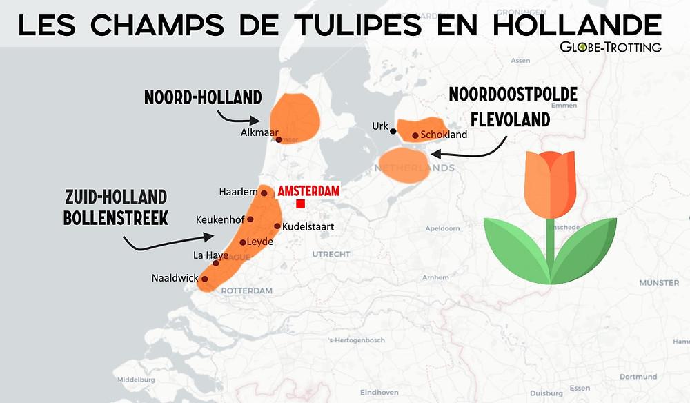 Carte Où voir les champs de tulipes en Hollande