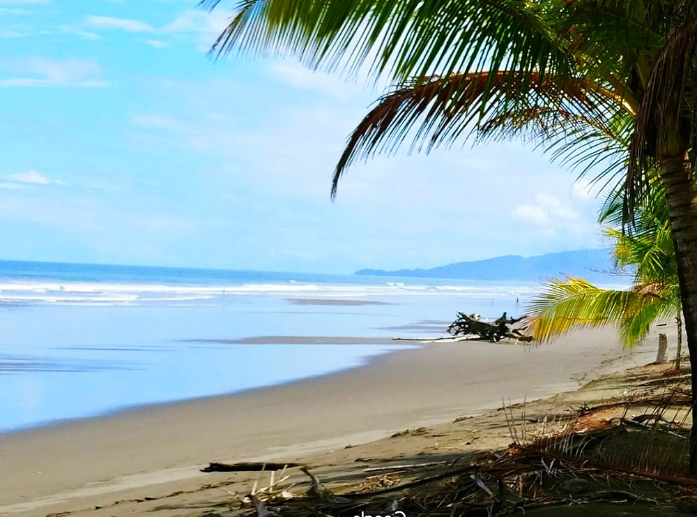 plage matapalo costa rica