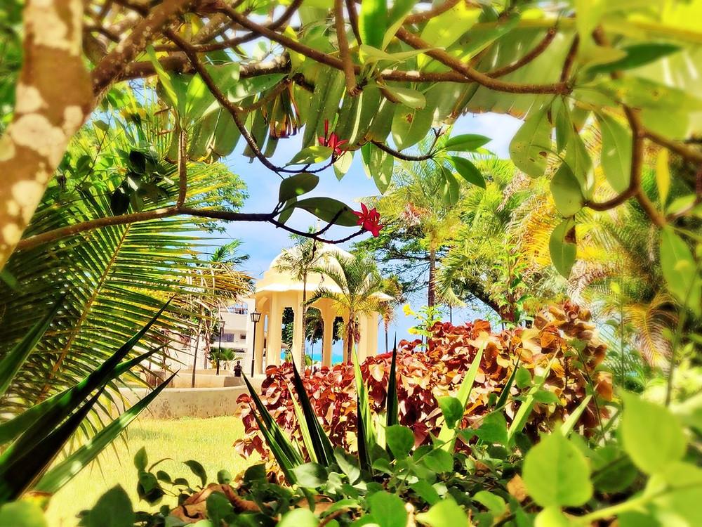 jardins de Forodhani