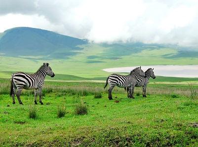 Itinéraire Tanzanie Ngorongoro