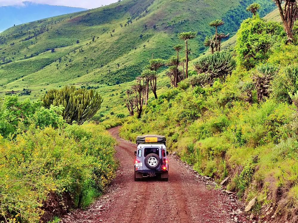 descente cratère ngorongoro 4x4