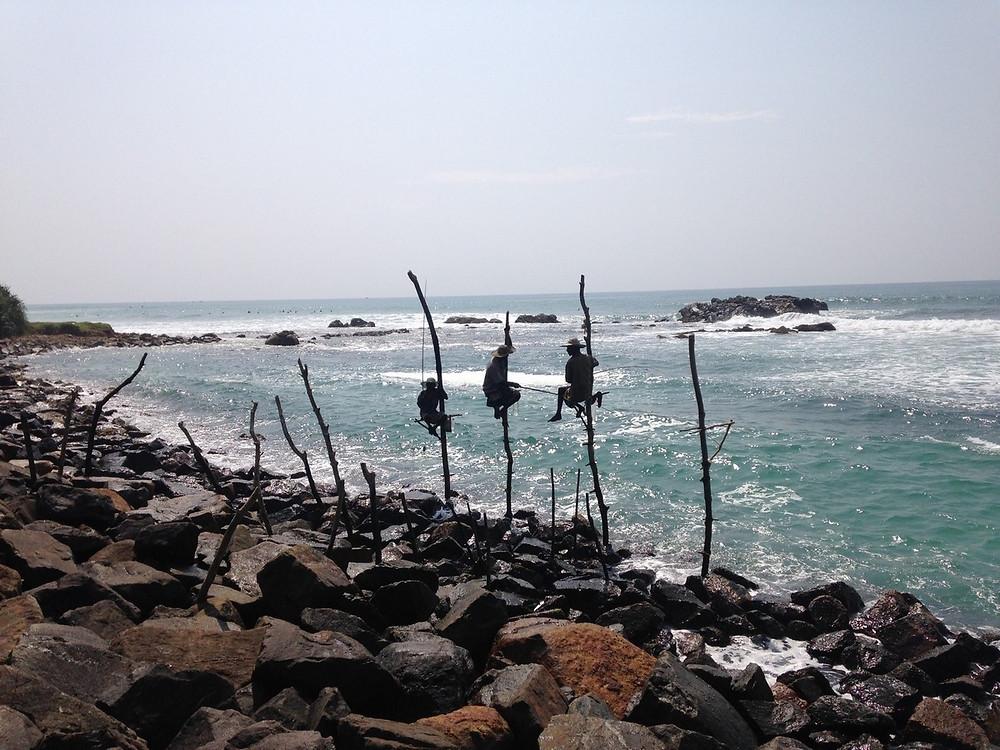 pêcheurs traditionnels sri lanka mirissa