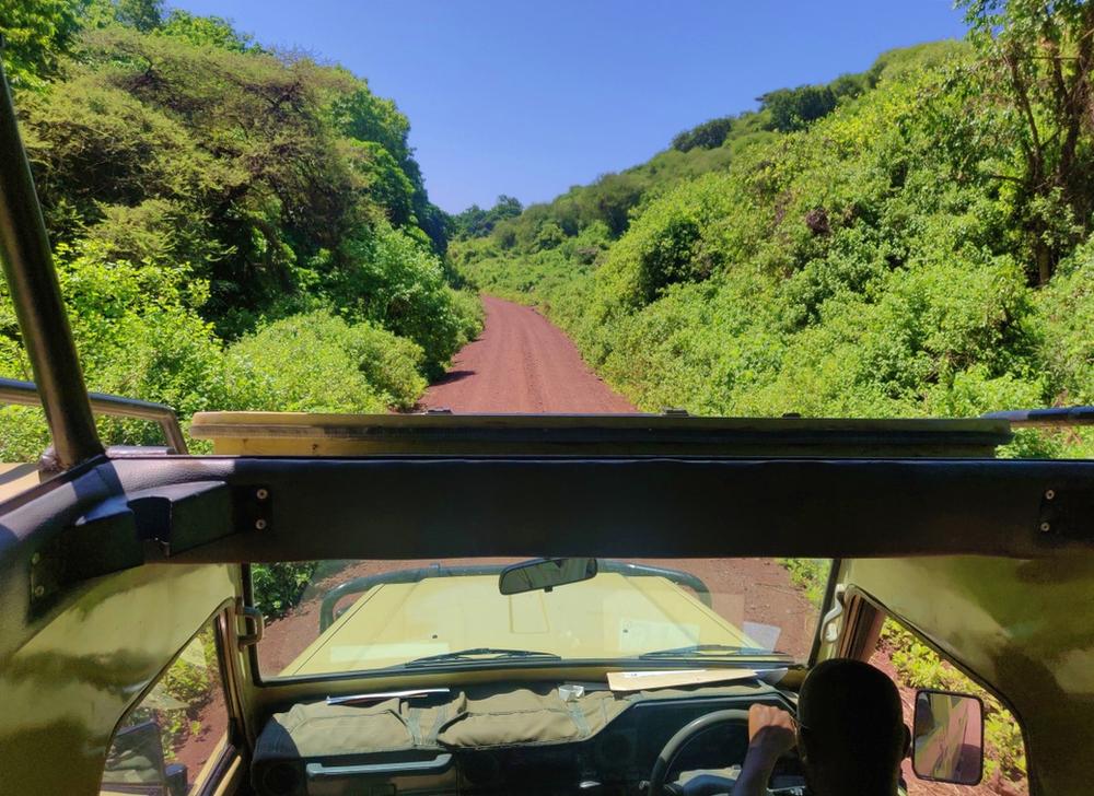 route parc manyara