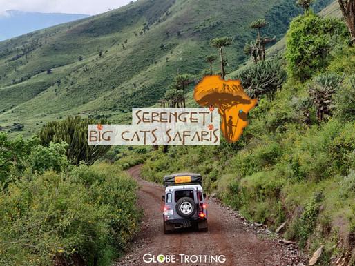 Mon safari en Tanzanie avec l'agence Serengeti Big Cats