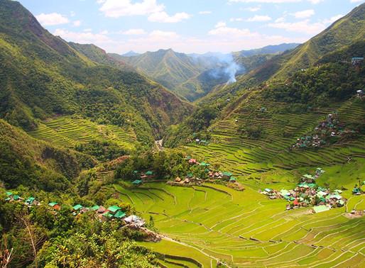 Les rizières en terrasses de Batad sur l'Ile de Luzon aux Philippines