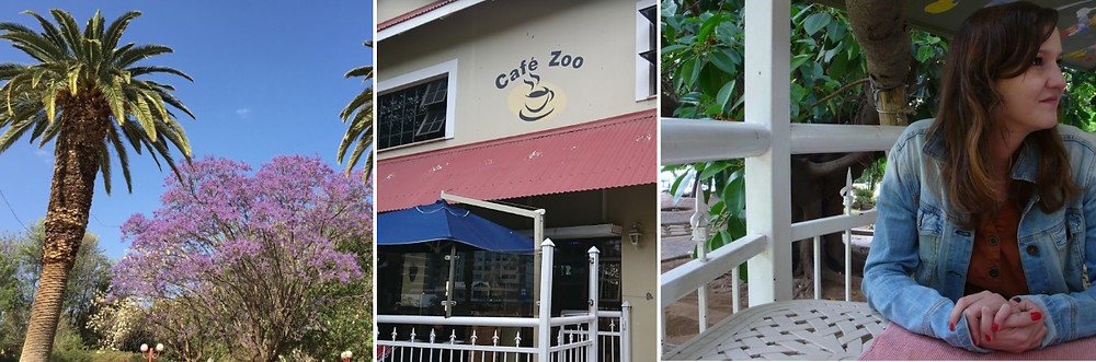 zoo parc cafe windhoek