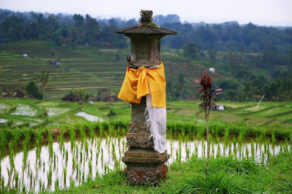 temple Jatiluwih à Bali