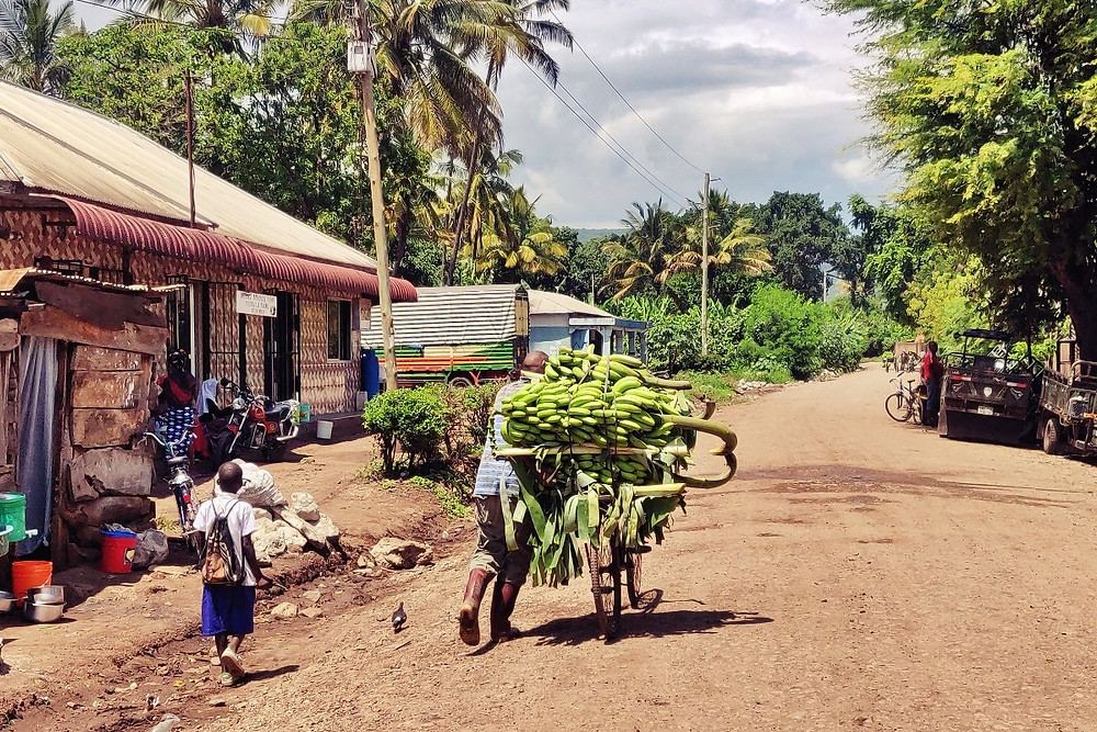 village de Mto Wa Mbu tanzanie