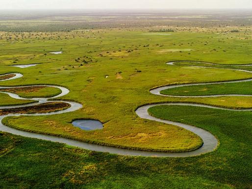 Le delta de l'Okavango au Botswana