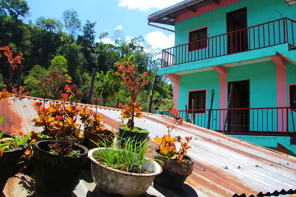 guesthouse cambulo luzon philippines