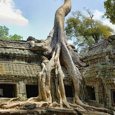 Voyage asie du sud-est Cambodge Angkor