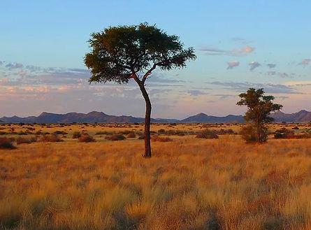 Naukluft Namibie Col de la Spreetshoogte