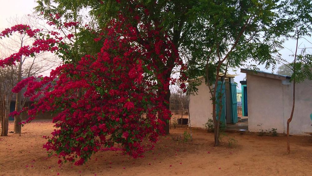 sanitaires du centre d'hébergement de Tsaravahiny de Mangily