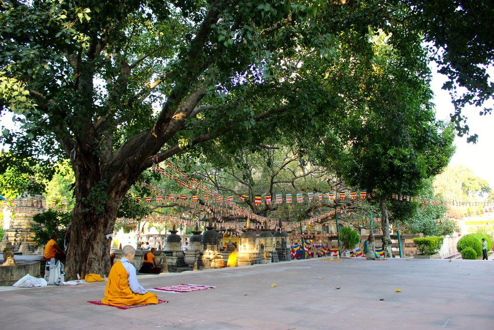 temple et jardins Bodhgaya