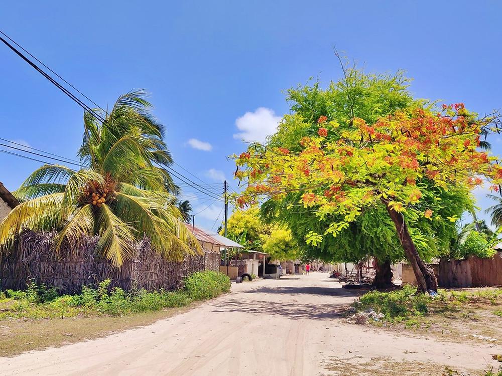 rue village de Jambiani