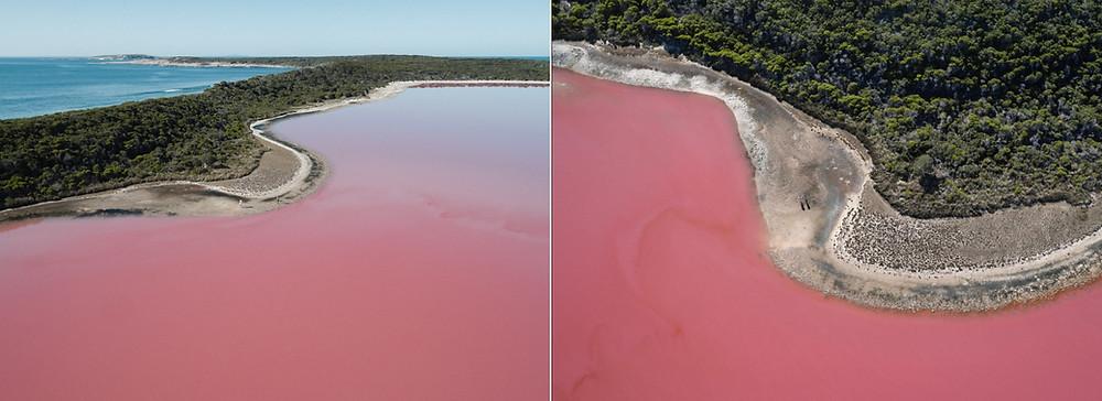 Le Lac rose australie Hillier