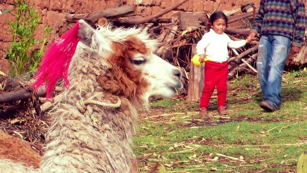 Pérou Chinchero Cuzco
