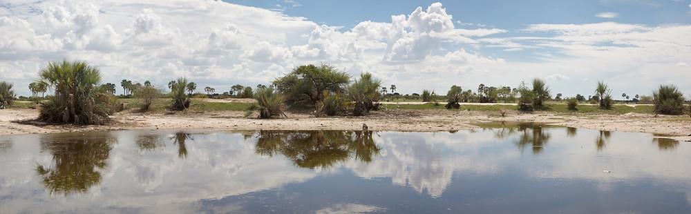 Paysage Okavango Caprivi
