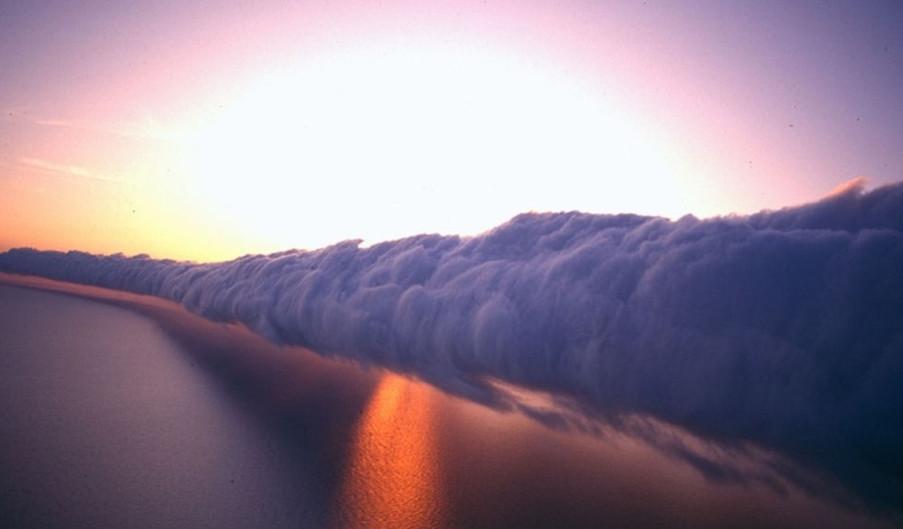 morning glory nuage