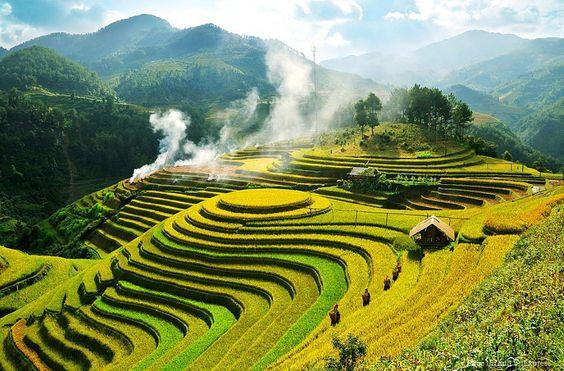 Vallée de Muong Hoa, Vietnam