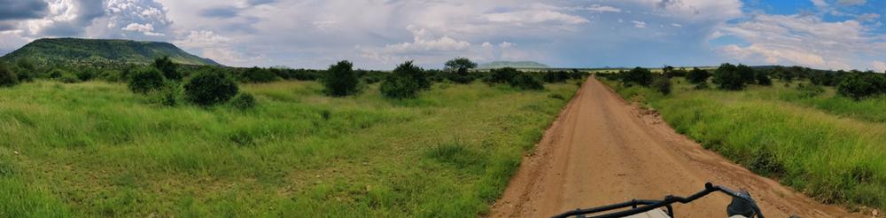 Paysages parc serengeti route