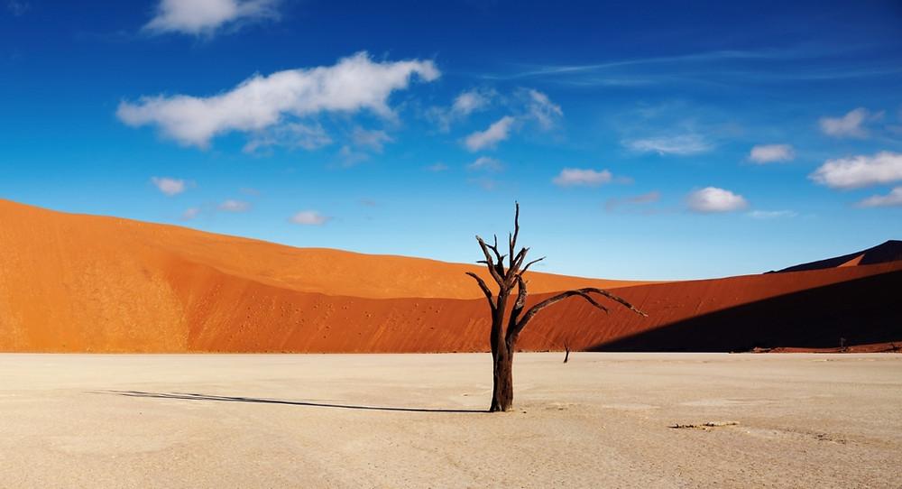 Deavlei Namibie