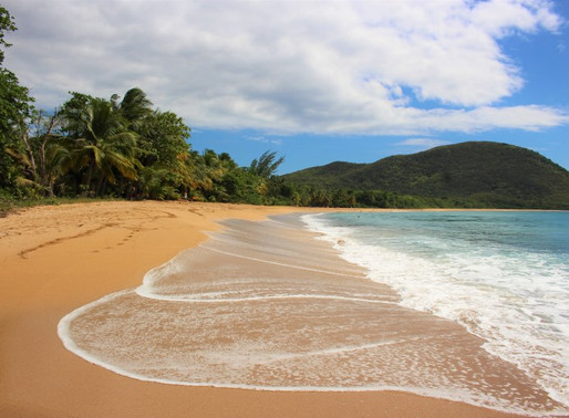 Une journée à Basse-Terre en Guadeloupe, plages et cascades du paradis