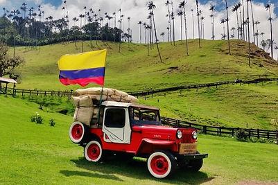 Cocora Voyage Colombie