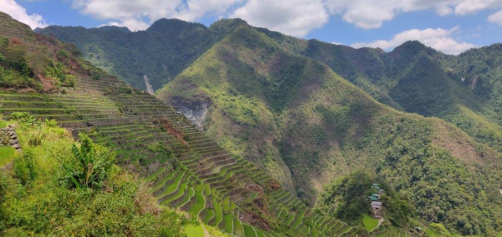 rizières luzon philippines