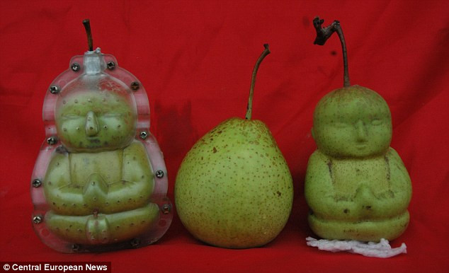 poire moule bouddha