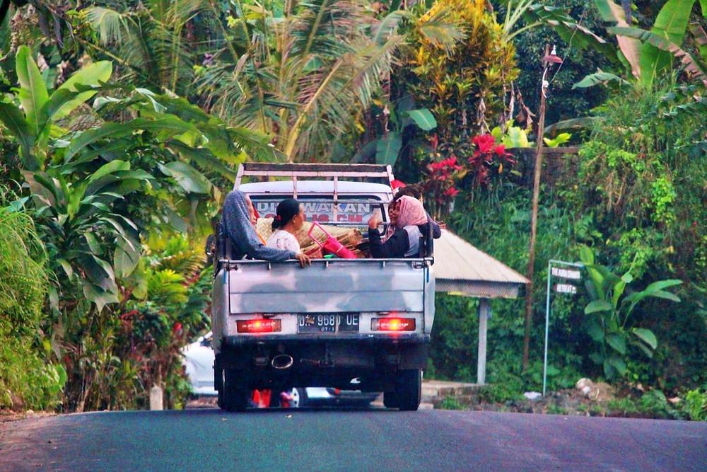 Comment se rendre aux Rizières Jatiluwih Bali