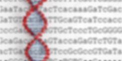 CRISPR Image.png