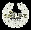 SAOlive-Award-300x289.png