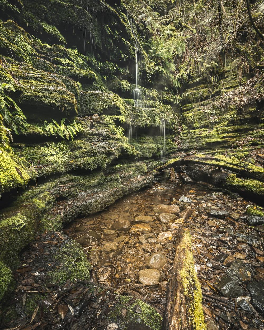 Myrtle Gully Falls, Waterfalls in Tasmania