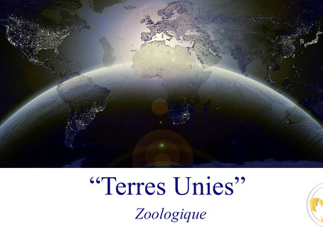 Zoo-Logique