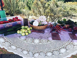 Yesterday's Farm Stand display. We also