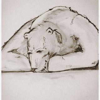 Tresenbären