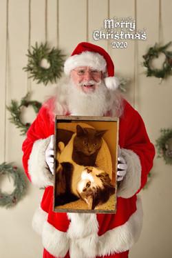 C Vertical Santa cats2