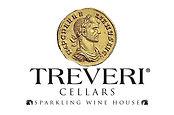 Treveri Logo Box II.jpg